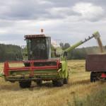 Maatilalla riittää töitä ympäri vuoden.