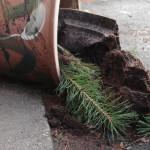 Tuuli kaatoi paitsi puita, myös muita pienempiä kohteita.