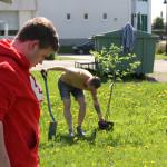 Kasperi Piironen ja Hans Ekroos hoitivat omanapuiden istutuksen kaivuupuolen.