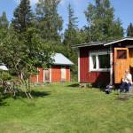 Pekka Parviainen on asunut kotitilallaan Niemisessä lähes koko elämänsä.