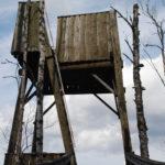 Kiesjärven lintutornia uhkaa purkaminen.