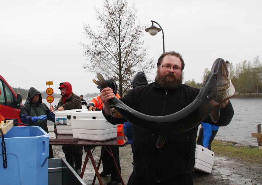 Liperiläisten Petri Vatasen (kuvassa) ja Janne Pellin saama hauki oli kilpailun toiseksi suurin. Vonkaleella oli painoa 9.2 kg. Koska pisteytyksessä painotus menee kalalajeittain, venekunnan lopullinen sijoitus oli 31. Kilpailun suurimman hauen (9,616 kg) saivat Juha Hämäläinen, Jouko Hintikka ja Teemu Ylönen (LUK).