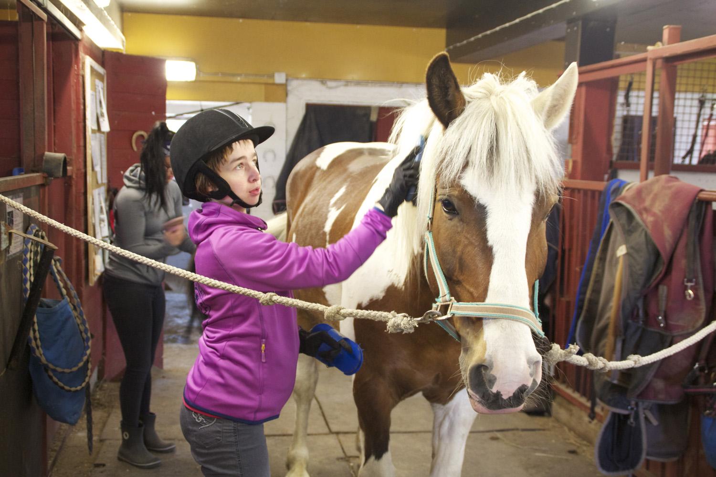 Nalle nauttii Satu Hilosen harjauksesta. Ratsastuksenohjaaja Krista Immonen avustaa tarvittaessa.