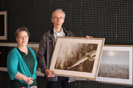 Mervi ja Roger ovat olleet yhdessä 34 vuotta ja täydentävät Mervin sanojen mukaan toisiaan. Nyqvistin pitelemän maalauksen nimi on Laulujoutsen vauhdissa.