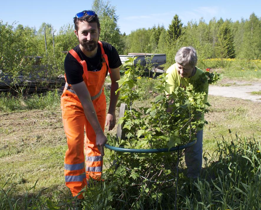 Francois auttaa Parrenmäen emäntää, Raija Albertia.