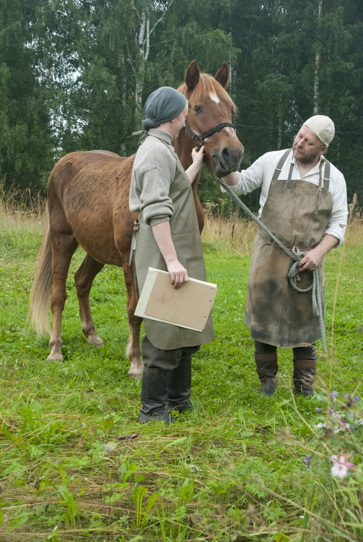Rääkkyläläinen Outi Hännikäinen, Topi-hevonen Kaavilta ja Tapio Tahvanainen Joensuusta toimivat avustajina hevosten sotasairaalaa mallaavassa kohtauksessa.