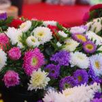 Värikkäistä ja kauniista kukista, niistä on Kukkakuhhaus tehty.