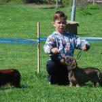 Jasper Käyhkö ja karkeakarvainen mäyräkoira Fani voittivat lapsi ja koira-luokan.